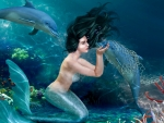 Mermaid Helping Dolphins