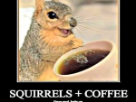 Squirrels and Coffee _God Help Us