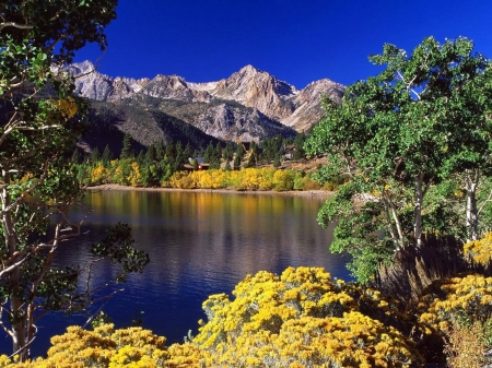Yellow and Blue - lake, blue, forest, mountain, sky, nature, trees