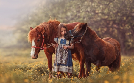 :-) - little, poney, child, animal, copil, cute, girl, horse, cal