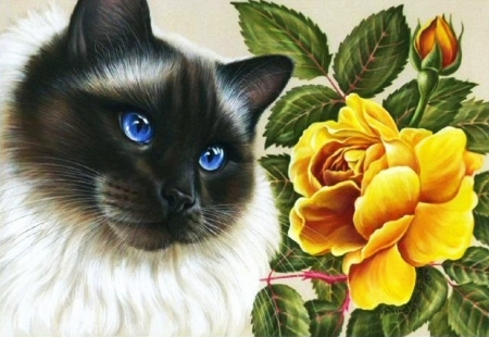Kitty and Rose - flower, artwork, blossom, cat, painting
