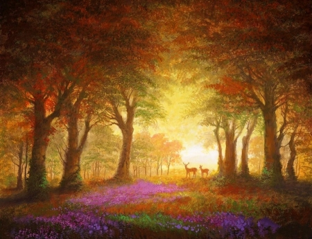 Woodland Sunrise - paradise, woods, forests, summer, attractions in dreams, love four seasons, paintings, trees, nature, sunrise, flowers, deer