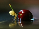 Snail and cherry
