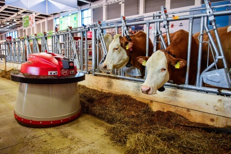 Robots at work - Robot, Berlin, Working, 19 Jan  2017, Automated farm exhibit, Dairy cows
