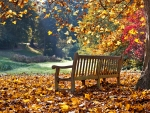A good autumn to contemplate