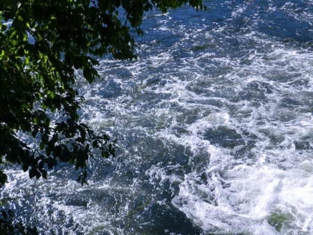 Swift Flowing River - Nature, Tree, River, Photography, Summer