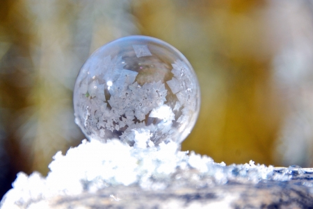 Frozen Ball - Frozen, Winter, Ball, Nature, White