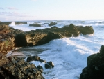 Waves on the Rocks in Humboldt County