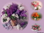 PRETTY FLOWERS COLLAGE