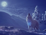 Wolves Magical Snow