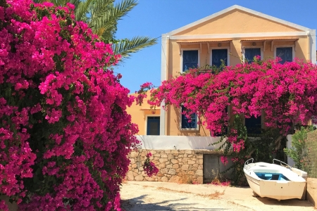 House in Greece - Greece, House, flower, in