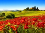 Castle on Tuscany Hill,Italy