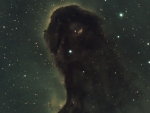 The Dust Monster in IC 1396