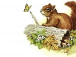 Squirrel and Butterfly F