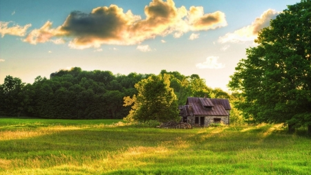 Hut on Grassy Field - field, clouds, grass, forest, hut, nature, house, trees