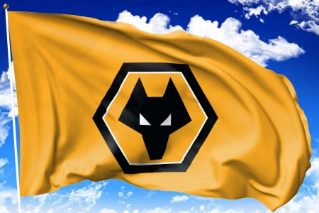 Wolves FC Flag - wolverhampton wanderers, wwfc, flag, england, fc, soccer, english, football, wolves, gold and black, socer, the wolves, flag pole