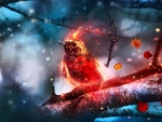 Magical bird
