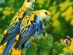 Two Parrots in the Jungle