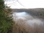 Foggy Hemlock Gorge in Spring, pt. 1