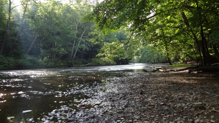Mohican River in Summer - Nature, Forest, River, Summer