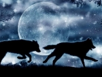 Wolves at Moonlight Night