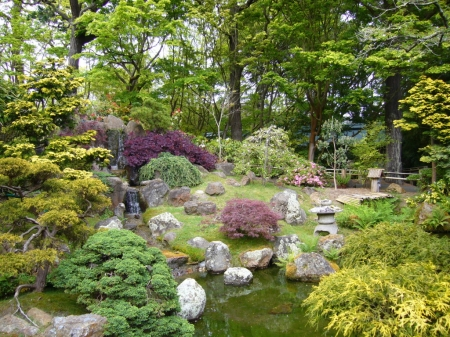 Japanese garden - photography, garden, nature, Japanese