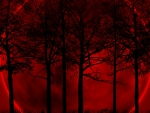Blood Moon in the Forest