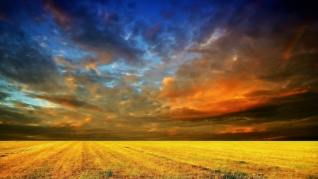 Cloudy Sunset over Golden Field - Nature, Sky, Fields, Clouds, Sunsets