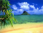 lovely exotic beach