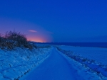 Winter Landscape at Twilight