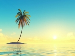 Island with coconut tree