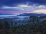 Foggy Hills of Scotland