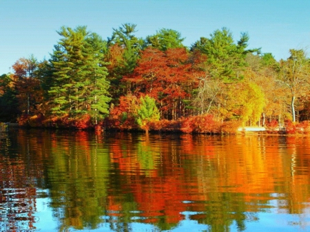 Calm Lake - mirror, lake, autumn, forest, calm, nature, reflection, trees
