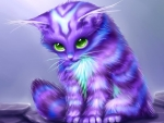 Purple Kitten