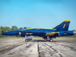 Blue Angels Squad ~ Precision Parking