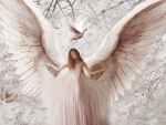 Etheral Pink Angel 1