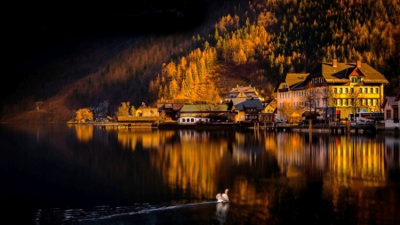 Reflections - town, river, reflection, hills, autumn, fall, lake, swan, darkness, mountain