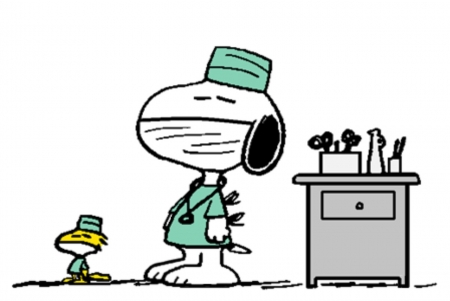 Snoopy and Woodstock  - Abstract, Snoopy, Woodstock, Funny