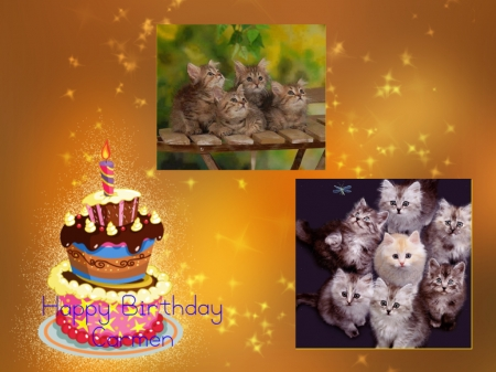 ~ ♥ღ Happy Birthday Carmen ღ♥ ~ - cats, friend, animals, Birthday