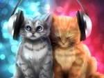 Head Phone Kittens