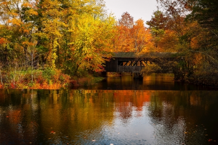 Autumn Fall Forest - lake, covered bridge, autumn, forest, trees, nature