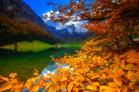Mountain lake in autumn - hills, branches, colors, foliage, cabin, forest, mountain, photo, lake, tranquil, autumn, fall, serenity, reflection