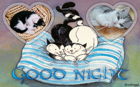 GOOD NIGHT - CARD, COMMENT, GOOD, NIGHT