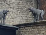 Angry Monkeys @ the Tower of London, England