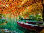 Turquoise lake in autumn