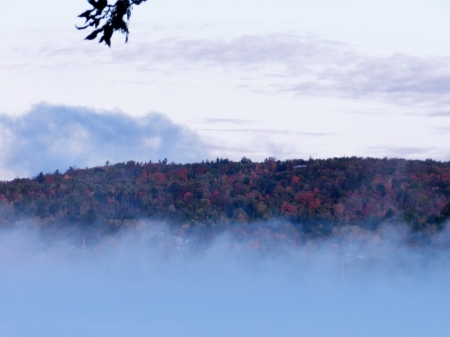 Autumn In The Fog - Nature, Autumn, Sky, Fog, Photography, Clouds, Forest