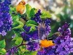 Yellow Birds And Lilacs