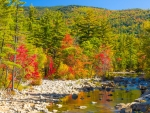 Fall in the White Mountains of New Hampshire