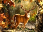 Whitetail in Fall