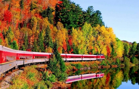 Autumn Trains - Nature, Trains, Autumn, Forests